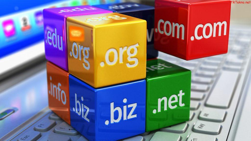 domain alirken nelere dikkat edilmeli